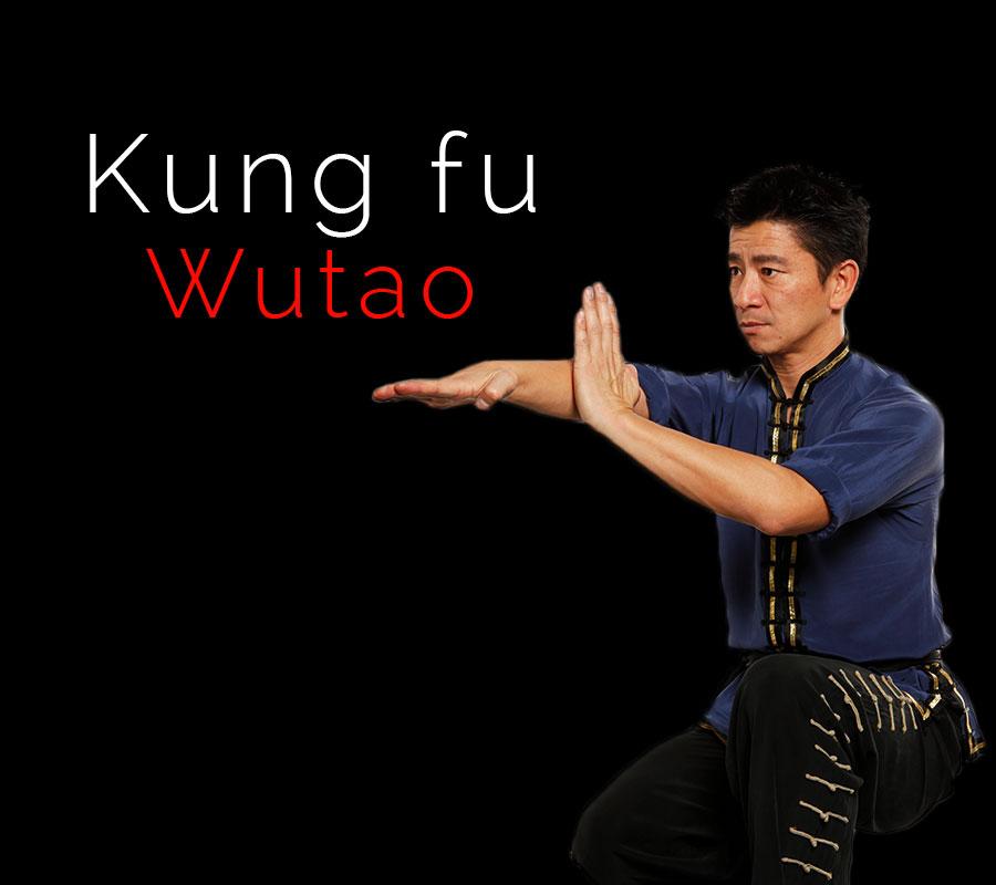 HOANG-NAM-KungFuWutao